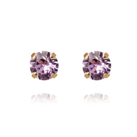 Caroline Svedbom Classic Stud Earrings Violet